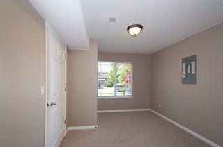 Photo 29: 12062 201B Street in Maple Ridge: Northwest Maple Ridge House for sale : MLS®# V1074754