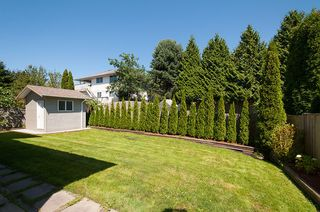 Photo 40: 12062 201B Street in Maple Ridge: Northwest Maple Ridge House for sale : MLS®# V1074754