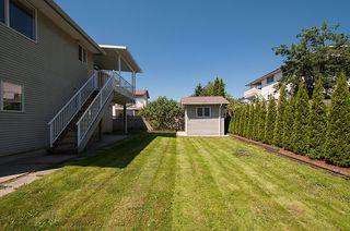 Photo 39: 12062 201B Street in Maple Ridge: Northwest Maple Ridge House for sale : MLS®# V1074754