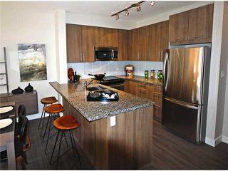 Photo 3: # 112 12075 EDGE ST in Maple Ridge: West Central Condo for sale : MLS®# V1048155