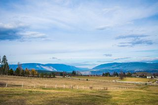 Photo 79: 6650 Southwest 15 Avenue in Salmon Arm: Panorama Ranch House for sale : MLS®# 10096171