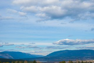Photo 13: 6650 Southwest 15 Avenue in Salmon Arm: Panorama Ranch House for sale : MLS®# 10096171