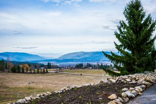 Photo 86: 6650 Southwest 15 Avenue in Salmon Arm: Panorama Ranch House for sale : MLS®# 10096171