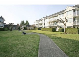 Photo 6: # 303 13965 16TH AV in Surrey: Sunnyside Park Surrey Condo for sale (South Surrey White Rock)  : MLS®# F1433971
