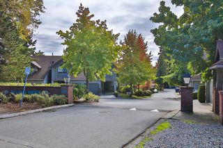 Photo 4: 412 13900 HYLAND ROAD in Surrey: East Newton Townhouse for sale : MLS®# R2112905
