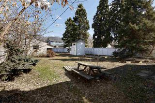 Photo 8: 10315 139 Street in Edmonton: Zone 11 House for sale : MLS®# E4194391
