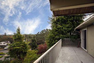 Photo 24: 2015 Pelly Pl in : OB Henderson House for sale (Oak Bay)  : MLS®# 856829
