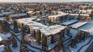 Photo 2: 208 14810 51 Avenue in Edmonton: Zone 14 Condo for sale : MLS®# E4217140