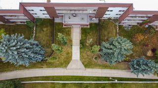 Photo 5: 208 14810 51 Avenue in Edmonton: Zone 14 Condo for sale : MLS®# E4217140