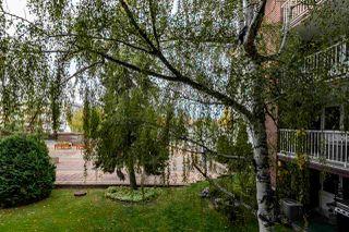 Photo 33: 208 14810 51 Avenue in Edmonton: Zone 14 Condo for sale : MLS®# E4217140