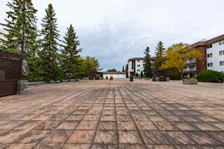 Photo 37: 208 14810 51 Avenue in Edmonton: Zone 14 Condo for sale : MLS®# E4217140