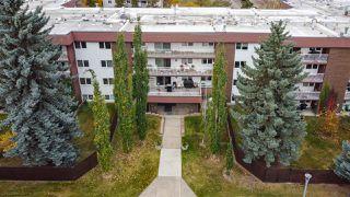 Photo 3: 208 14810 51 Avenue in Edmonton: Zone 14 Condo for sale : MLS®# E4217140
