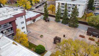 Photo 4: 208 14810 51 Avenue in Edmonton: Zone 14 Condo for sale : MLS®# E4217140
