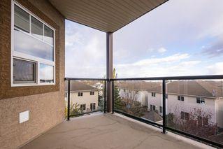 Photo 43: 312 2045 GRANTHAM Court in Edmonton: Zone 58 Condo for sale : MLS®# E4218280