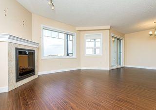 Photo 13: 312 2045 GRANTHAM Court in Edmonton: Zone 58 Condo for sale : MLS®# E4218280