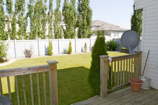 Photo 20: 356 Calderon Cr NW: Edmonton House for sale