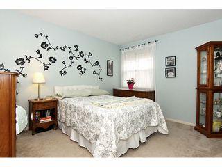 "Photo 34: 41 8855 212TH Street in Langley: Walnut Grove Townhouse for sale in ""Golden Ridge"" : MLS®# F1320345"