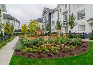 Photo 20: 15 8476 207A STREET in Langley: Willoughby Heights Townhouse for sale : MLS®# R2114834
