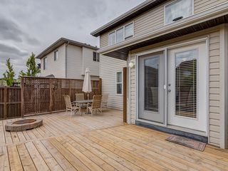 Photo 29: 87 Chapman Circle SE in Calgary: Chaparral House for sale : MLS®# C4064813