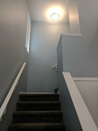 Photo 7: 13008 205 Street in Edmonton: House Duplex for rent
