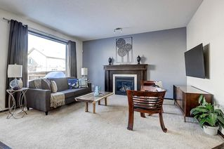Photo 17: 60 CRANBERRY CI SE in Calgary: Cranston Detached for sale : MLS®# C4274885
