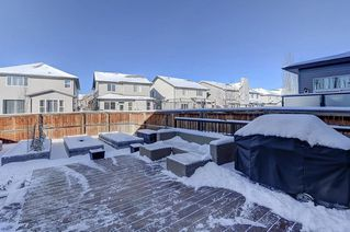 Photo 29: 60 CRANBERRY Circle SE in Calgary: Cranston Detached for sale : MLS®# C4274885