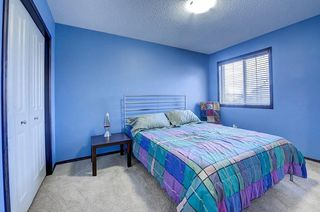 Photo 27: 60 CRANBERRY CI SE in Calgary: Cranston Detached for sale : MLS®# C4274885
