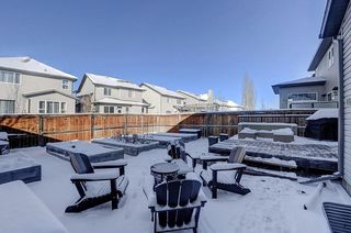 Photo 28: 60 CRANBERRY Circle SE in Calgary: Cranston Detached for sale : MLS®# C4274885