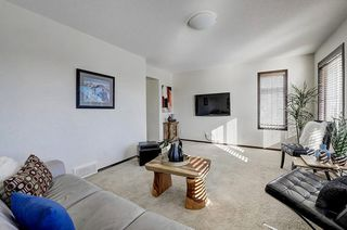 Photo 20: 60 CRANBERRY Circle SE in Calgary: Cranston Detached for sale : MLS®# C4274885
