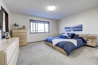 Photo 22: 60 CRANBERRY Circle SE in Calgary: Cranston Detached for sale : MLS®# C4274885