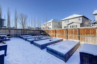 Photo 30: 60 CRANBERRY CI SE in Calgary: Cranston Detached for sale : MLS®# C4274885