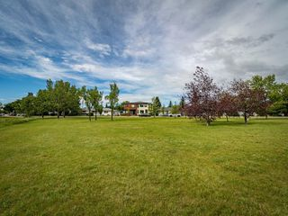 Photo 39: 35B MONCTON Road NE in Calgary: Winston Heights/Mountview Semi Detached for sale : MLS®# A1024659