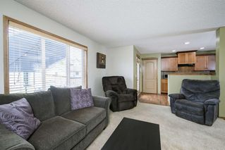 Photo 17: 234 ELGIN View SE in Calgary: McKenzie Towne Detached for sale : MLS®# A1035029
