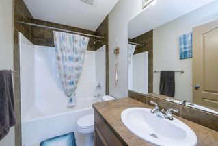 Photo 31: 234 ELGIN View SE in Calgary: McKenzie Towne Detached for sale : MLS®# A1035029
