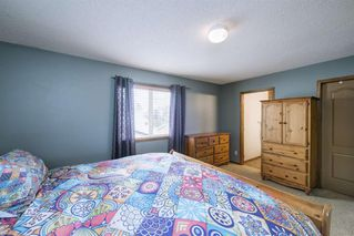 Photo 22: 234 ELGIN View SE in Calgary: McKenzie Towne Detached for sale : MLS®# A1035029