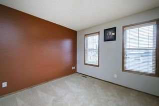 Photo 27: 234 ELGIN View SE in Calgary: McKenzie Towne Detached for sale : MLS®# A1035029