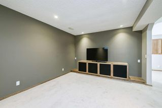Photo 36: 234 ELGIN View SE in Calgary: McKenzie Towne Detached for sale : MLS®# A1035029