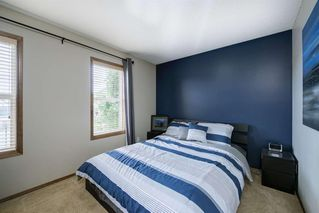 Photo 30: 234 ELGIN View SE in Calgary: McKenzie Towne Detached for sale : MLS®# A1035029