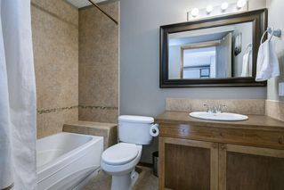 Photo 39: 234 ELGIN View SE in Calgary: McKenzie Towne Detached for sale : MLS®# A1035029