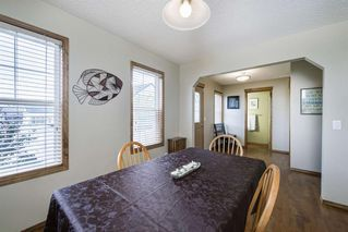 Photo 4: 234 ELGIN View SE in Calgary: McKenzie Towne Detached for sale : MLS®# A1035029