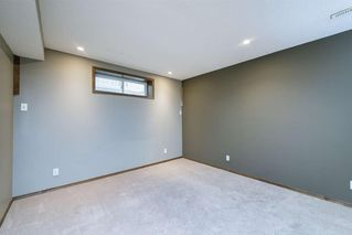 Photo 33: 234 ELGIN View SE in Calgary: McKenzie Towne Detached for sale : MLS®# A1035029