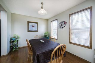 Photo 3: 234 ELGIN View SE in Calgary: McKenzie Towne Detached for sale : MLS®# A1035029