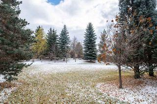 Photo 45: 329 ESTATE Drive: Sherwood Park House for sale : MLS®# E4218815