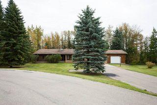 Photo 42: 140 Lac Ste. Anne Trail: Rural Sturgeon County House for sale : MLS®# E4224197