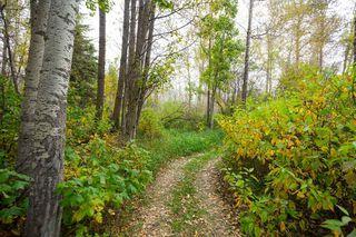 Photo 41: 140 Lac Ste. Anne Trail: Rural Sturgeon County House for sale : MLS®# E4224197