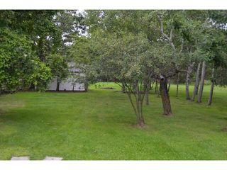 Photo 17: 591 Fairmont Road in WINNIPEG: Charleswood Residential for sale (South Winnipeg)  : MLS®# 1316410