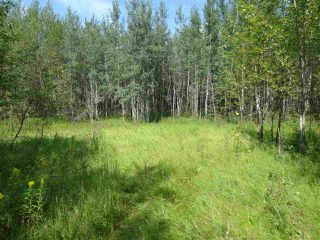 Photo 6: RR263 Twp Rd 625: Rural Westlock County Rural Land/Vacant Lot for sale : MLS®# E4169270