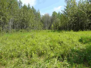 Photo 7: RR263 Twp Rd 625: Rural Westlock County Rural Land/Vacant Lot for sale : MLS®# E4169270