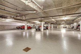 Photo 15: 236 10 Discovery Ridge Close SW in Calgary: Discovery Ridge Apartment for sale : MLS®# C4302410