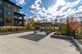 Photo 20: 205 5029 EDGEMONT Boulevard in Edmonton: Zone 57 Condo for sale : MLS®# E4204284